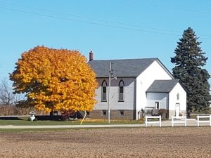 fall-eastwood-united-picture